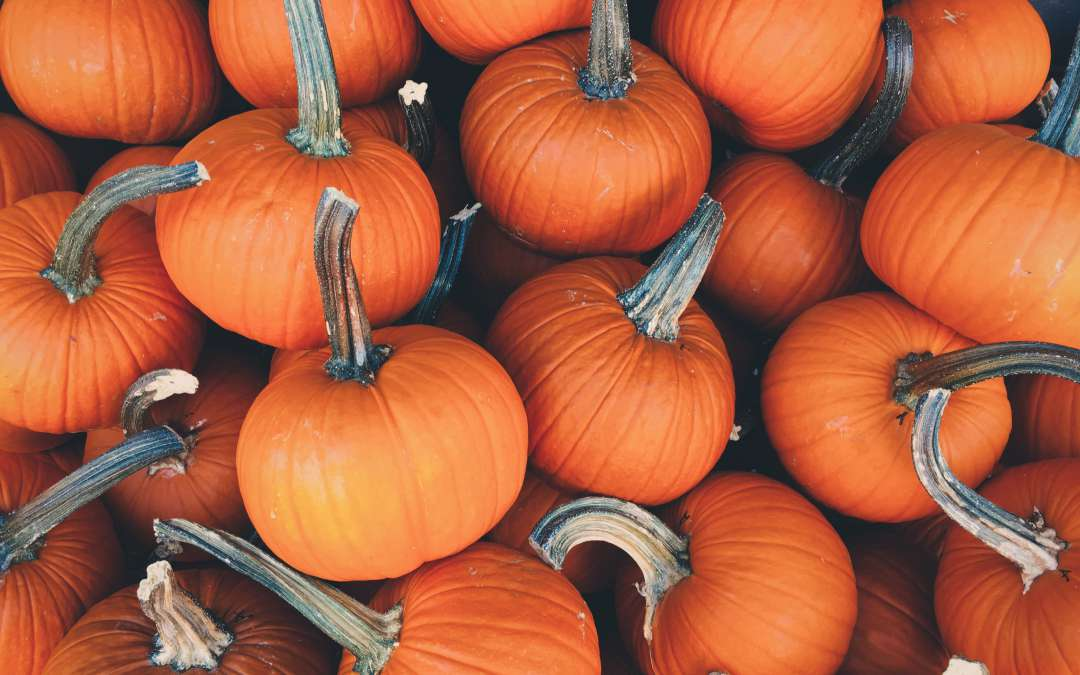 The Halloween Effect
