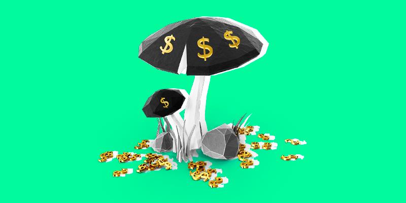 $1.2bn 'Miracle Mushrooms' IPO 🍄