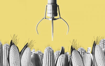 The Perils of Farming 🌱